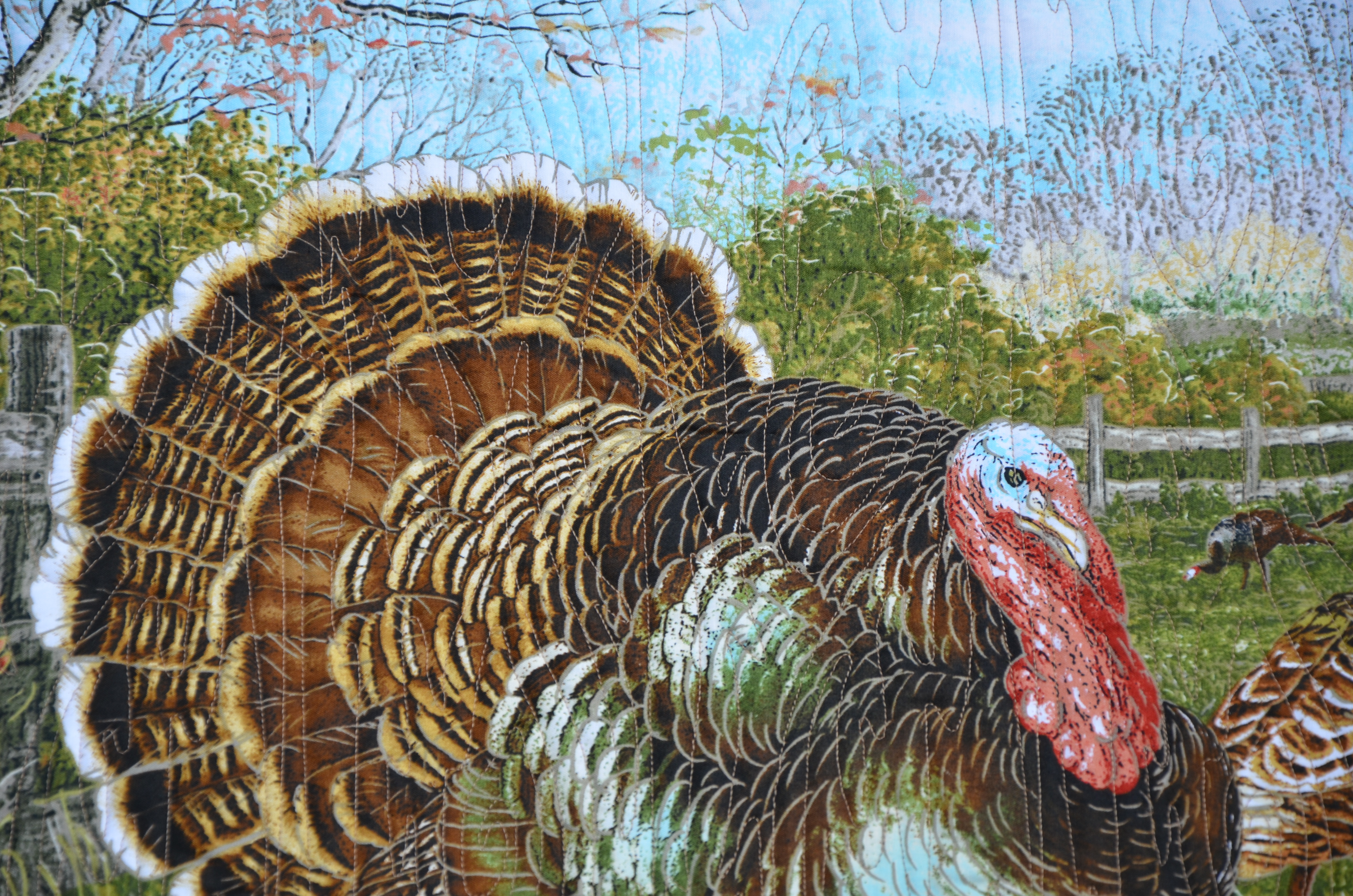 Margie Turkey (3)
