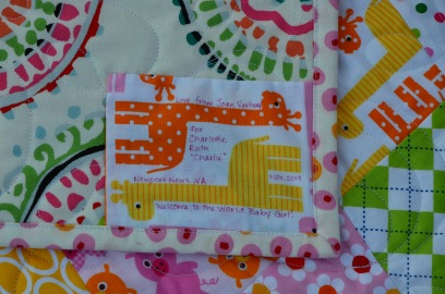 Tumbler Baby Quilts (5)